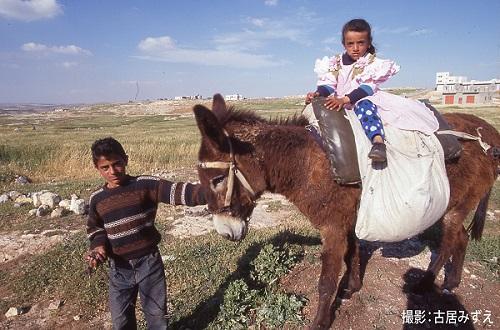 パレスチナ問題の経緯
